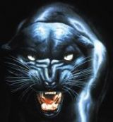 Panther аватар