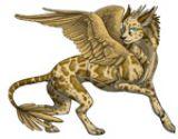 Rainbow Dragon аватар